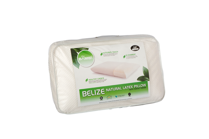 Belize High profile pillow suitable for all stores